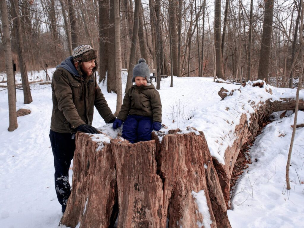 boy learning about tree rings sitting on really large tree stump with his dad