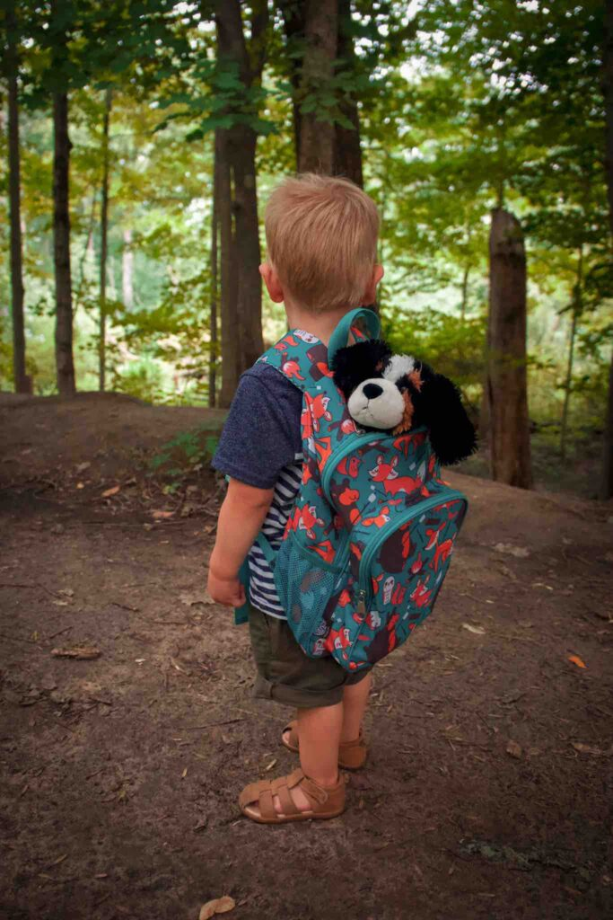 While hiking with toddler, small boy wears own backpack with stuffed animal dog poking out.