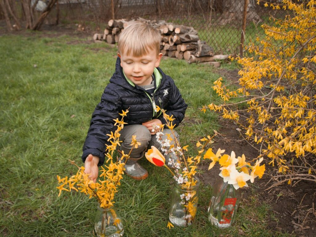 Small boy putting clippings in vases for May Day arrangements.