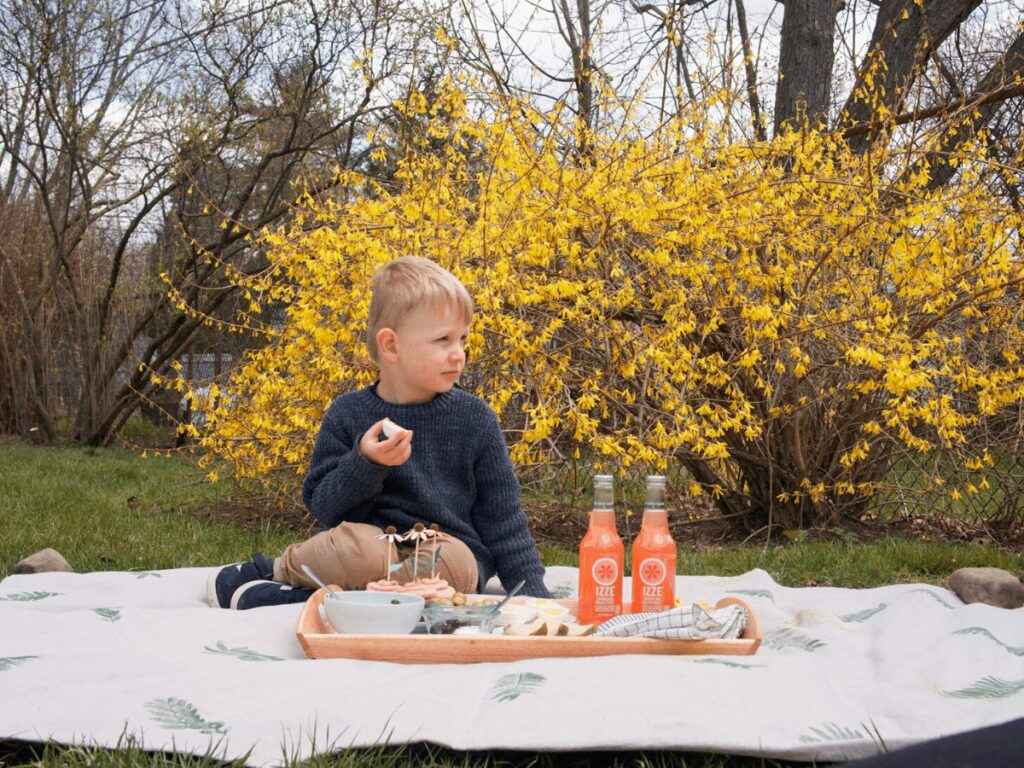 spring picnic- small boy sits on blanket eating in front of flowering yellow bush