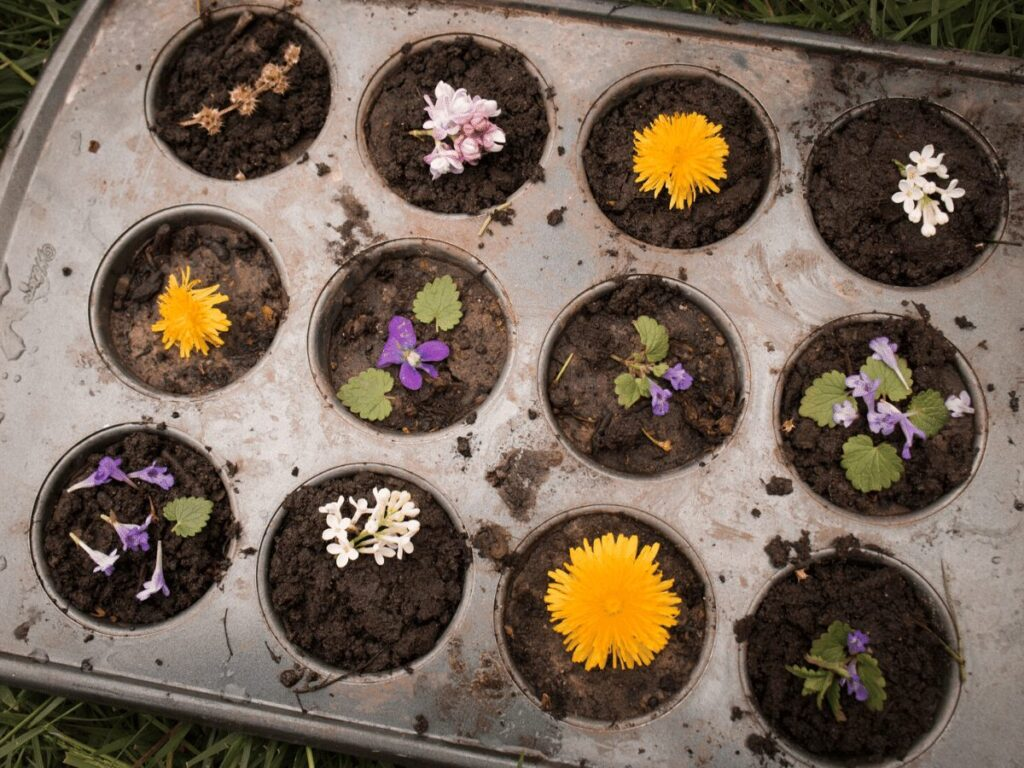 mud decorated with flowers in muffin pan- create your own mud kitchen