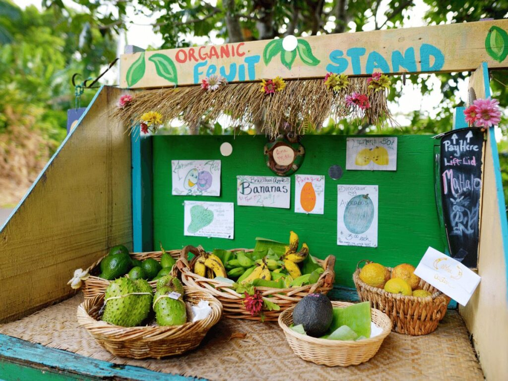 fruit stand- business ideas for kids