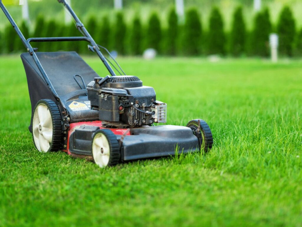 close-up of lawn mower sitting on grass- business ideas for kids