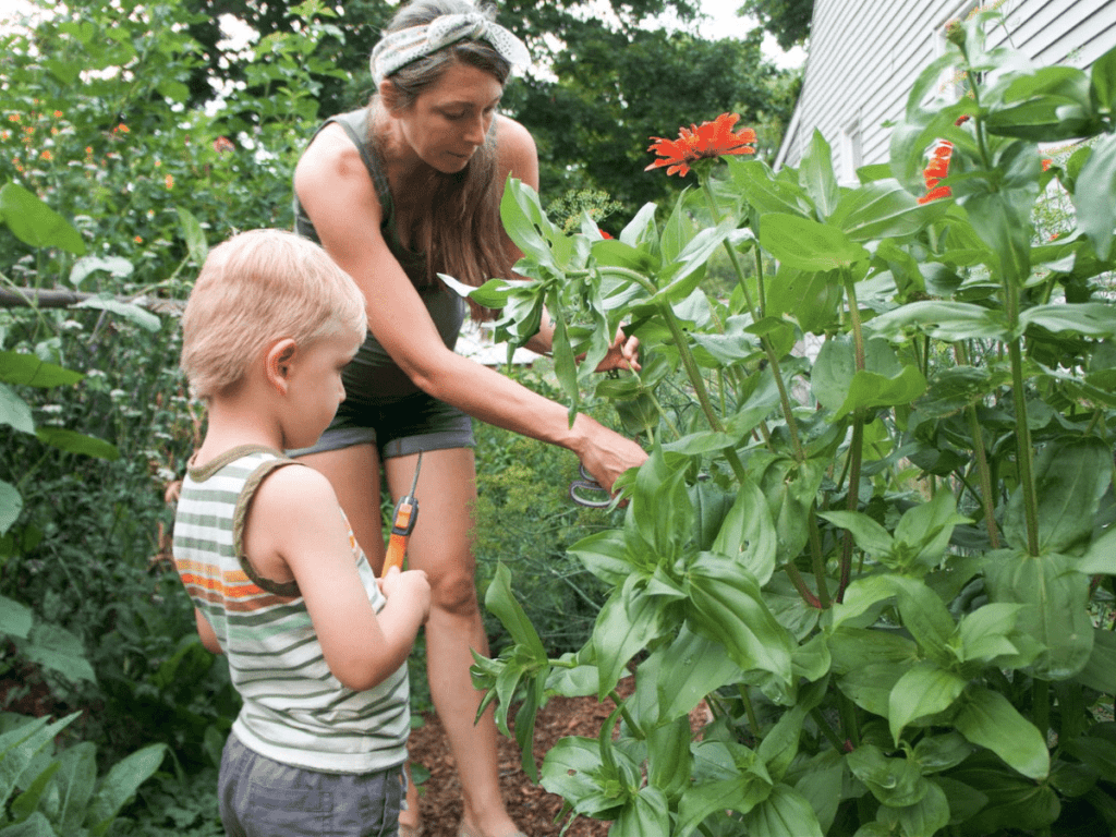 Mom and small boy in the garden cutting flowers for a nature weaving