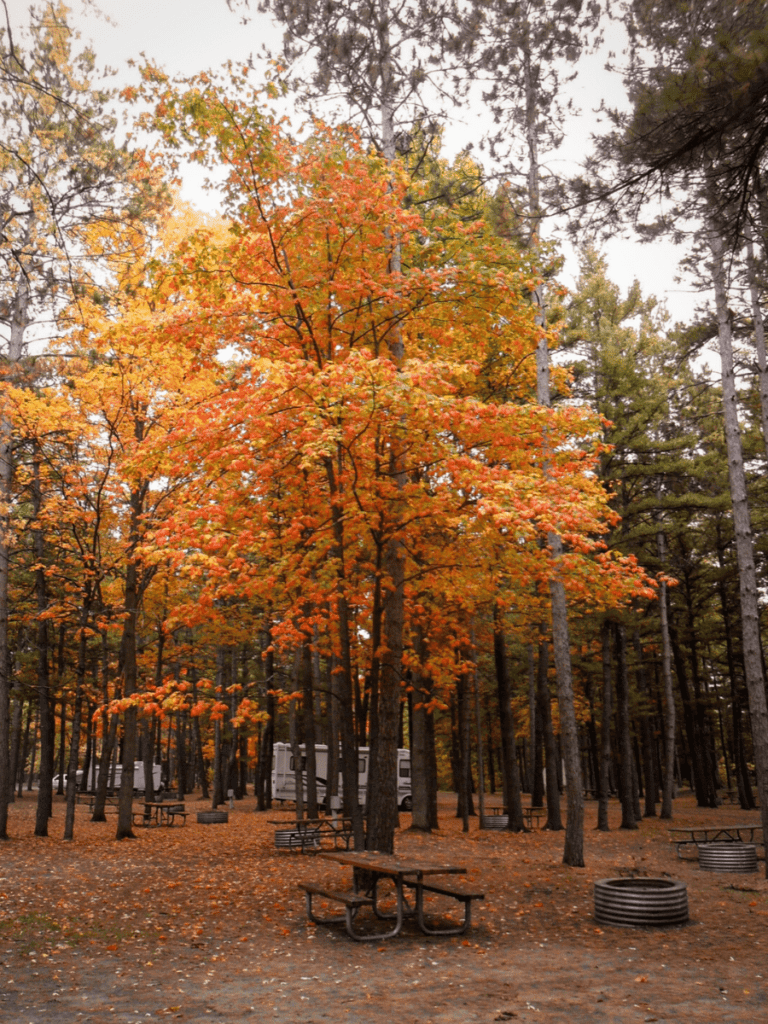 campground in the fall with colorful foliage- activities in traverse city