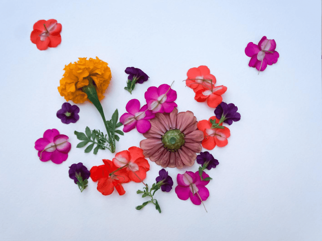 flowers arranged face down on piece of paper- flower crafts