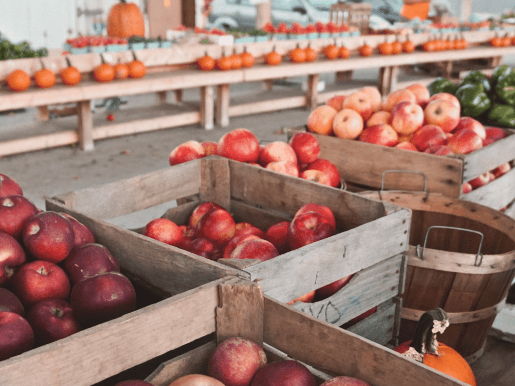 fall bucket list, crates at farmer's market in autumn filled with apples, peppers, and pumpkins