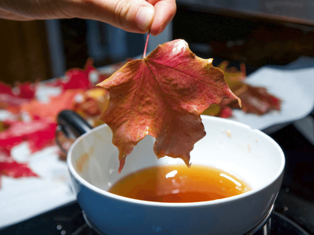 close-up of hand dipping orange maple leaf into bowl of beeswax, fall crafts for kids