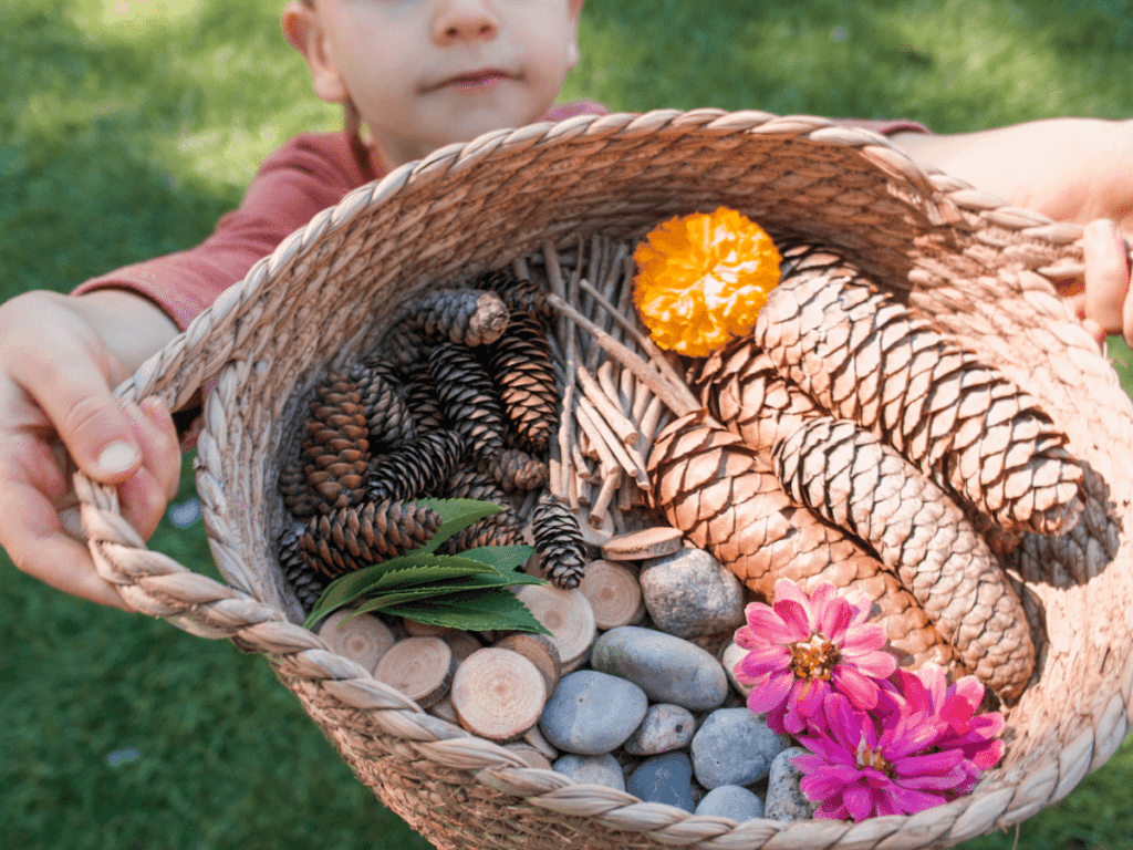 preschool activities, boy holding up basket filled with different nature items