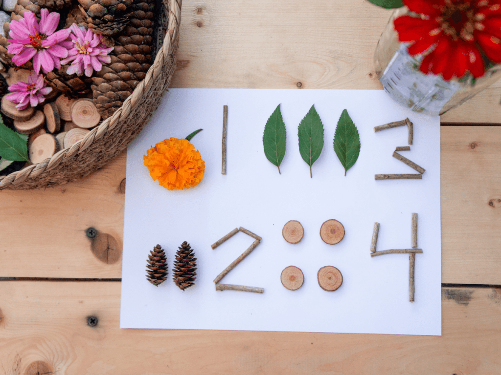 preschool activities, nature objects laid out with numbers next to them