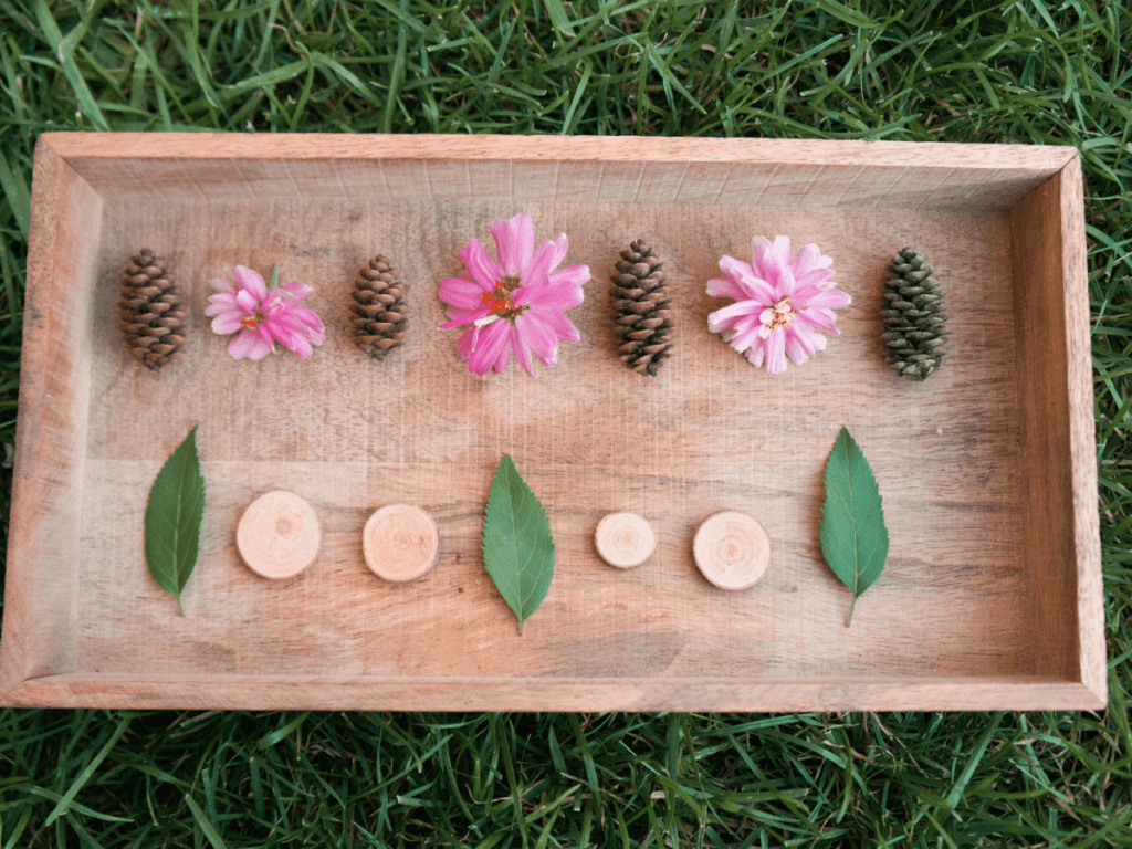 preschool activities, patterns created with flowers, pine cones, wood slabs, and leaves
