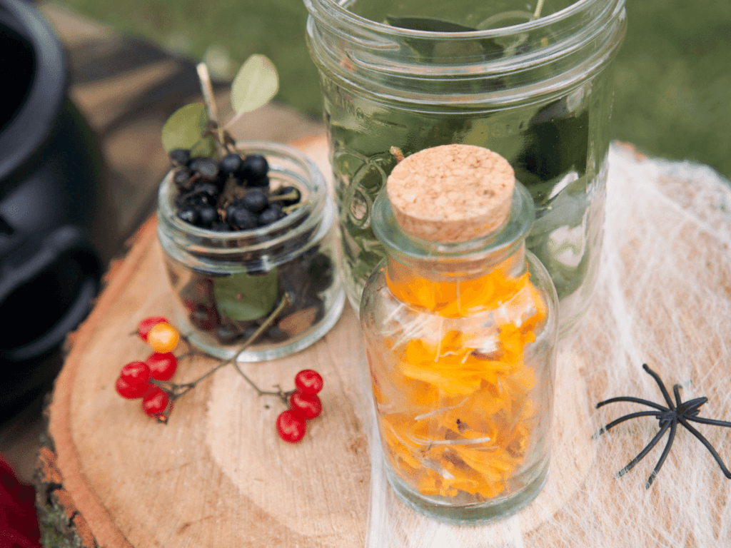 halloween activities for kids, close up of jars filled with nature ingredients for potion mixing