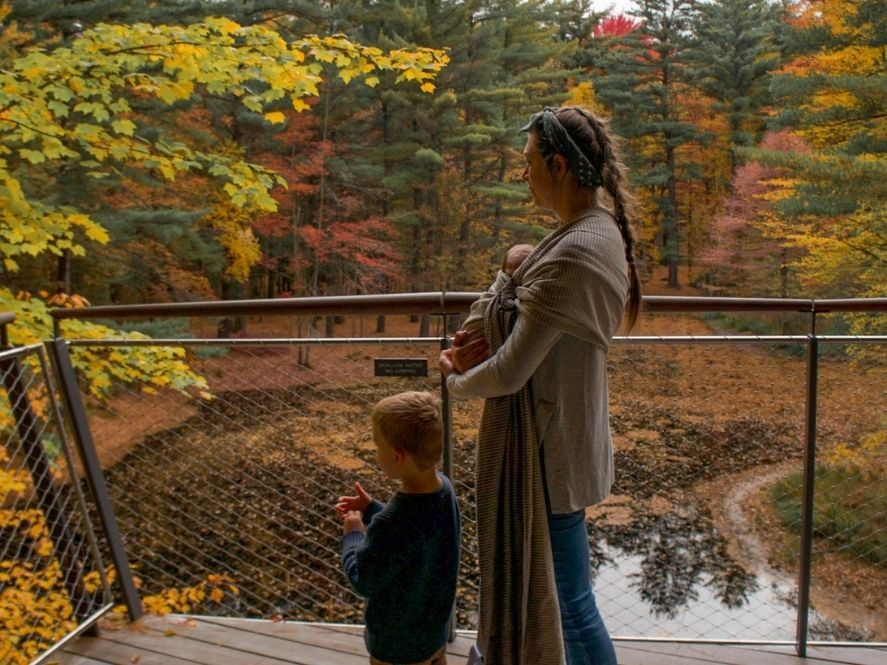 small boy and mother look out at pond and fall foliage from platform in canopy walk of dow gardens