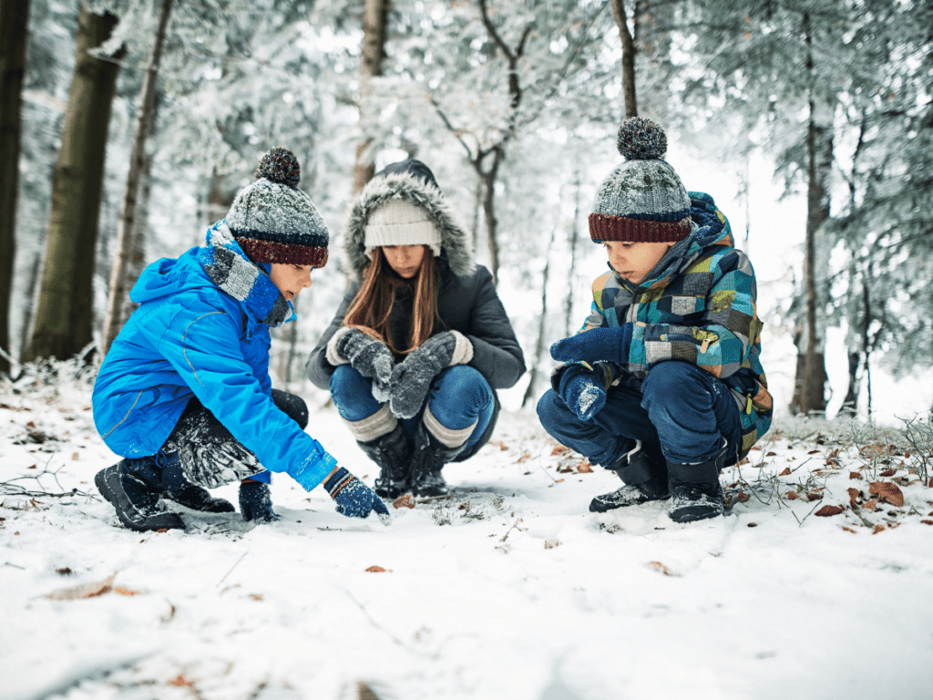 kids looking at animal tracks in snow
