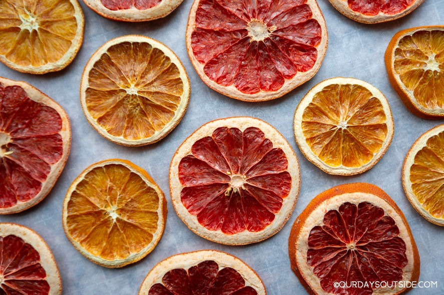 dried orange and grapefruit slices