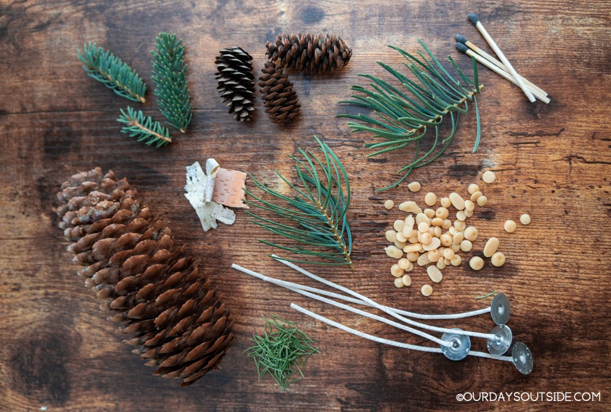 assortment of pinecones, needles, matches, beeswax, and candle wicks
