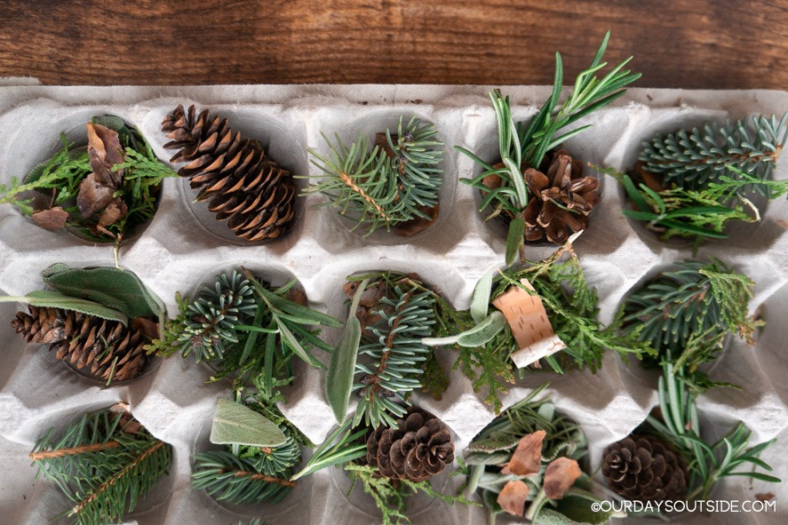 egg carton filled with pine needles and pine cones for DIY fire starters