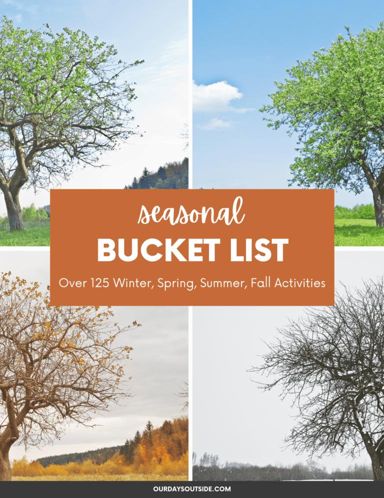 Seasonal Bucket List